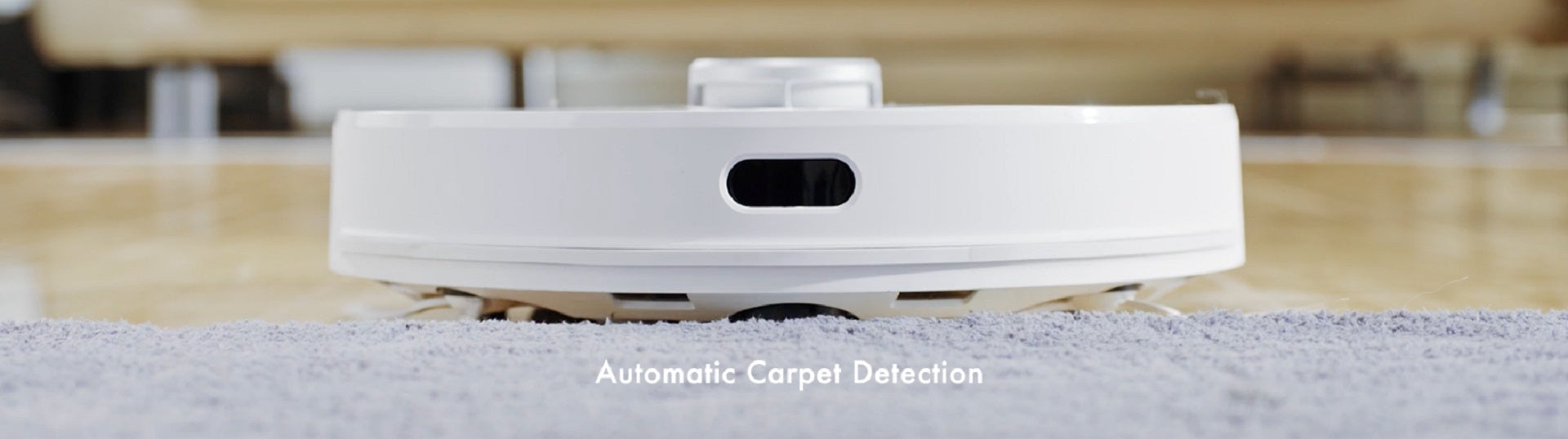 Automatic Carpet Detection
